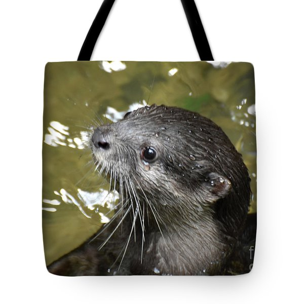 North American River Otter Swimming In A River Tote Bag
