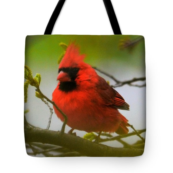 North Carolina Cardinal Tote Bag