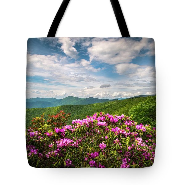 North Carolina Spring Flowers Mountain Landscape Blue Ridge Parkway Asheville Nc Tote Bag