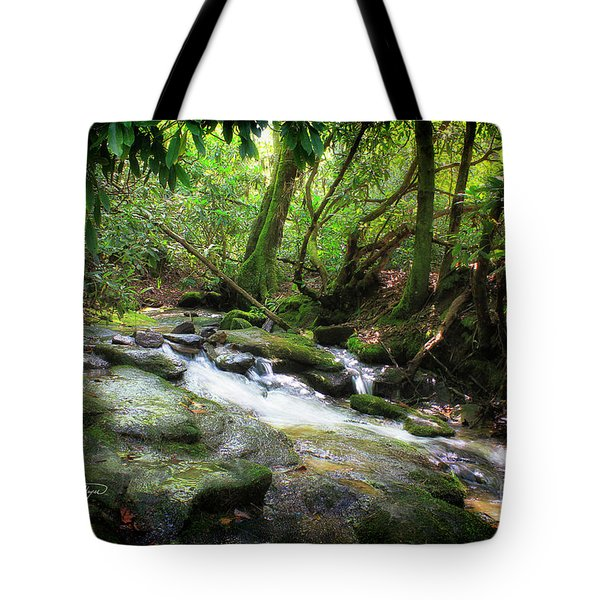North Georgia Mountains  Tote Bag