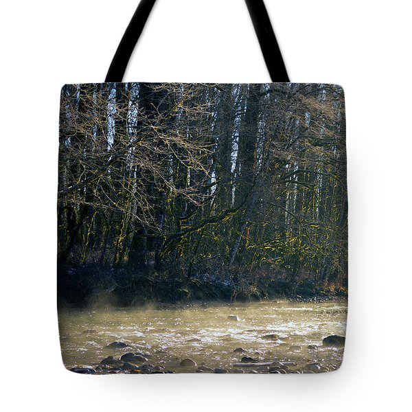 North Stilly Too Tote Bag