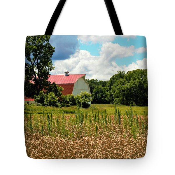 0031 - Northern Barn Tote Bag
