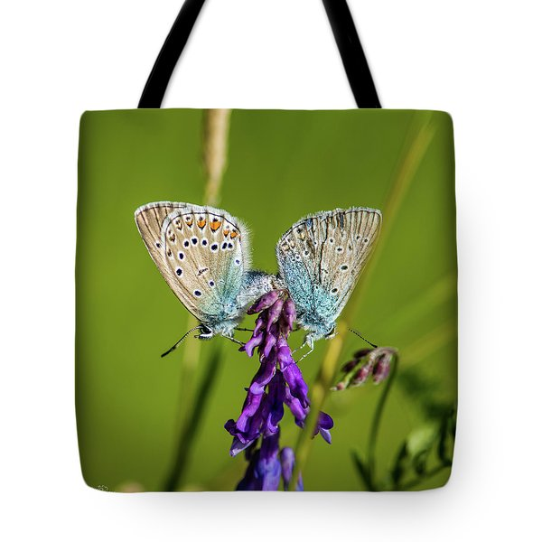 Northern Blue's Mating Tote Bag