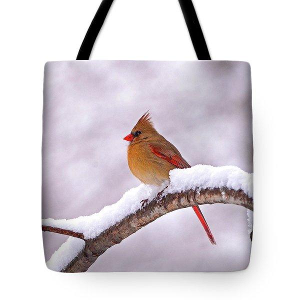Northern Cardinal In Winter Tote Bag