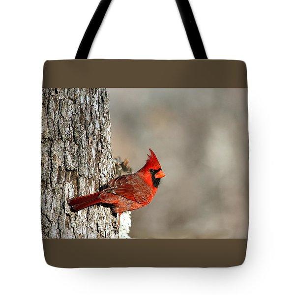 Northern Cardinal On Tree Tote Bag