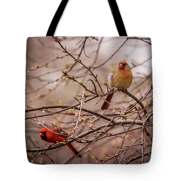 Tote Bag featuring the photograph Northern Cardinal Pair In Spring by Terry DeLuco