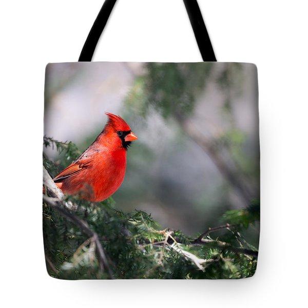 Northern Cardinal Red Tote Bag
