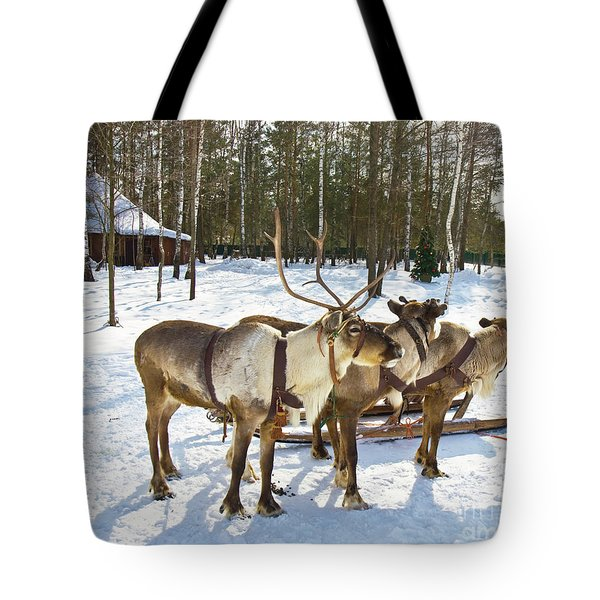 Northern Deers Tote Bag
