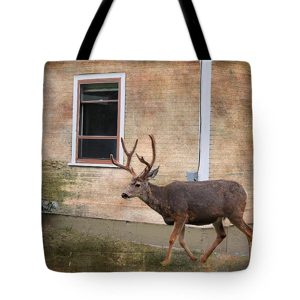 Northern Exposure Photo Paint Tote Bag