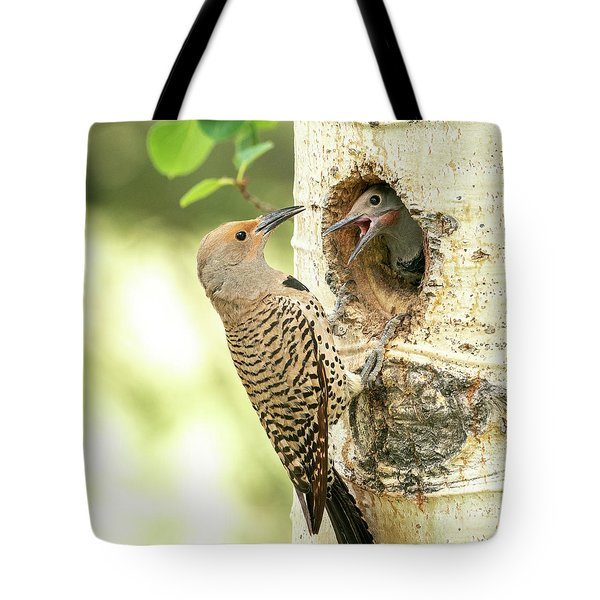 Northern Flicker Feeding Baby Tote Bag