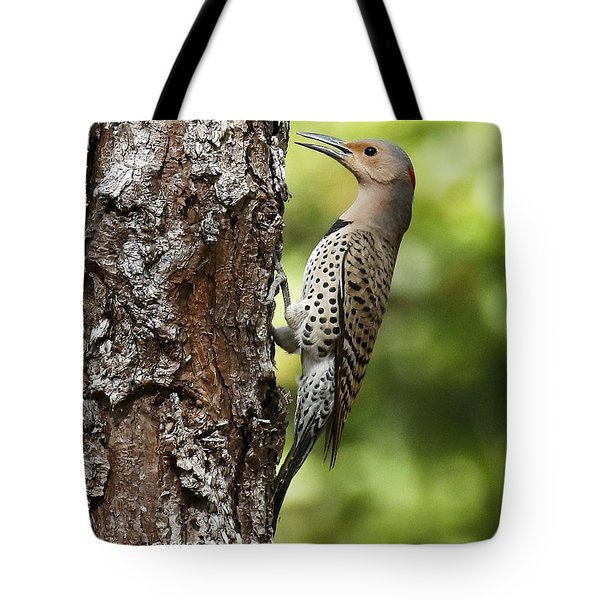 Northern Flicker On The Hunt Tote Bag