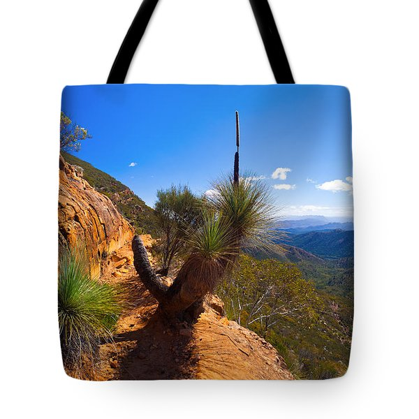 Northern Flinders Ranges And The Abc Range Tote Bag by Bill  Robinson