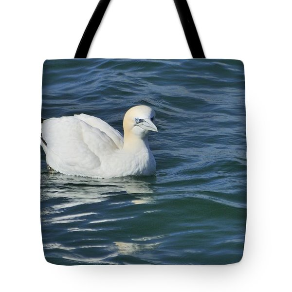 Tote Bag featuring the photograph Northern Gannet Resting On The Water by Bradford Martin