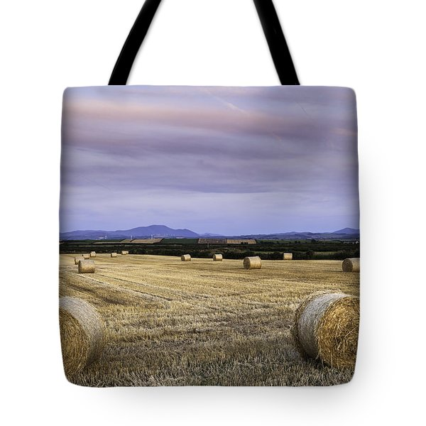 Northern Lakeland View Tote Bag