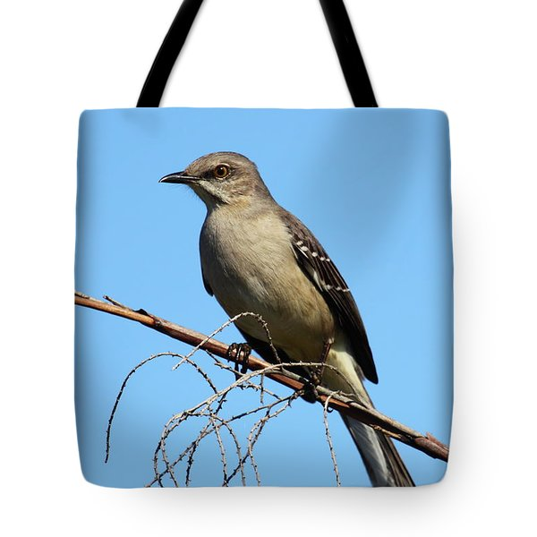 Northern Mockingbird Tote Bag by Bruce J Robinson