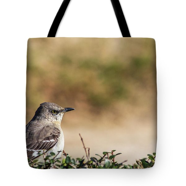 Northern Mockingbird Sitting On Top Of A Hedge Tote Bag