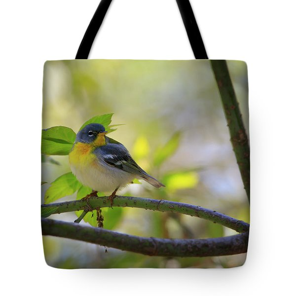 Northern Parula Tote Bag by Gary Hall