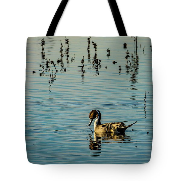 Northern Pintail At The Wetlands Tote Bag