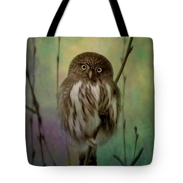 Northern Pygmy Owl  Tote Bag