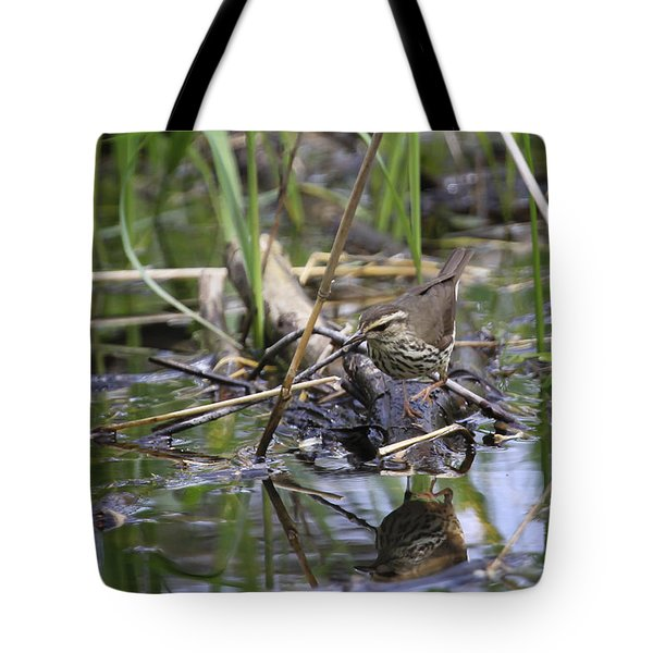 Northern Waterthrush Tote Bag by Gary Hall