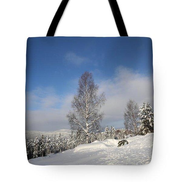 Norwegian Valley. Tote Bag