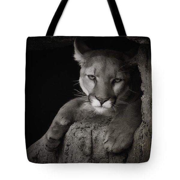 Not A Happy Cat Tote Bag