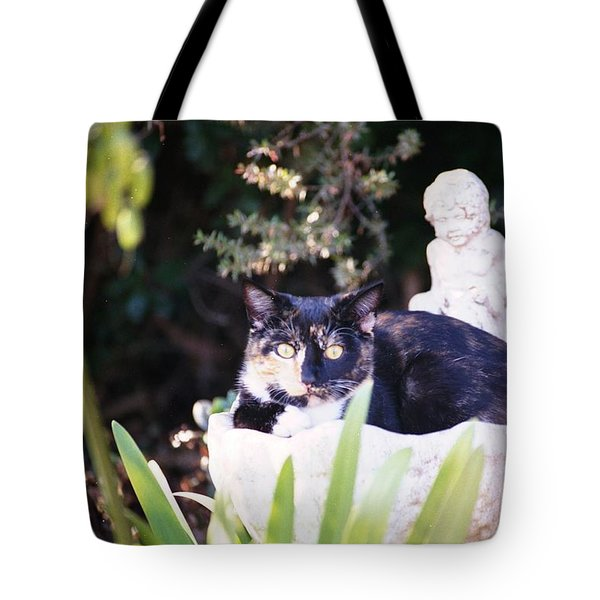 Not Just For The Birds Tote Bag