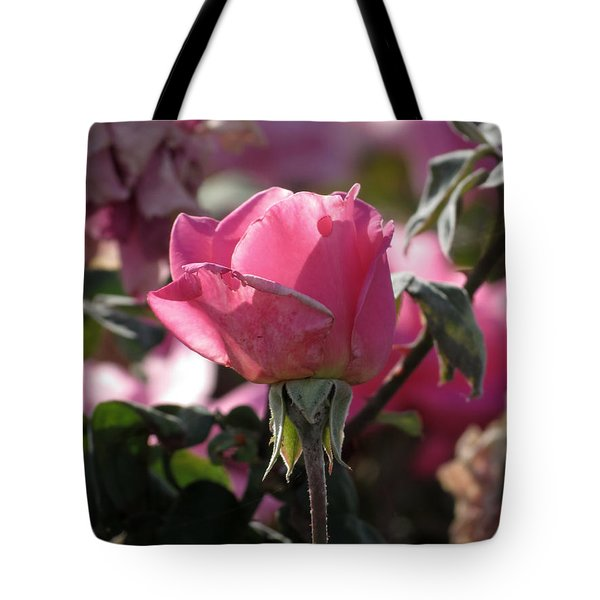 Tote Bag featuring the photograph Not Perfect But Special by Laurel Powell
