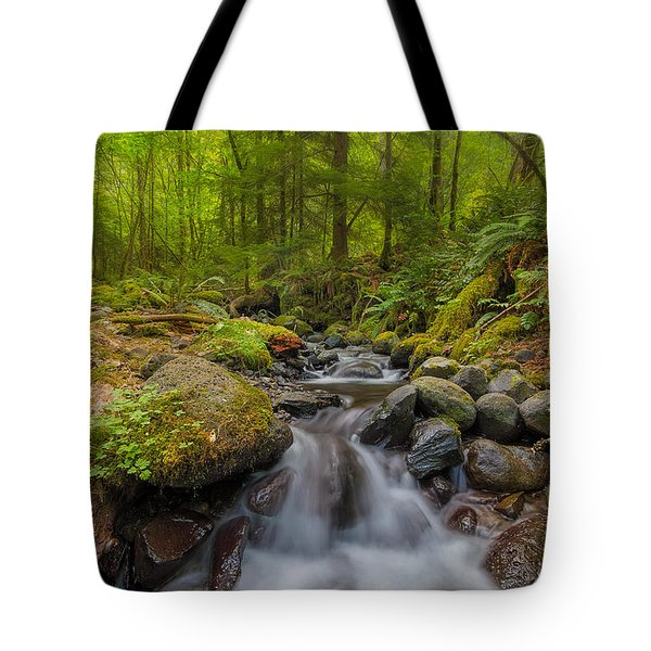 Not-so-dry Creek Tote Bag by David Gn