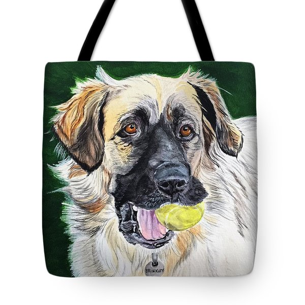 Not Too Old To Play Tote Bag