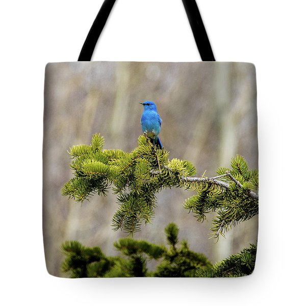 Notice The Pretty Bluebird Tote Bag by Yeates Photography