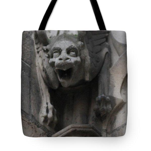 Notre Dame 1 Tote Bag
