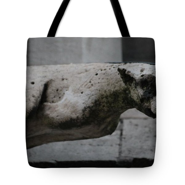 Notre Dame Bat Gargoyle Tote Bag