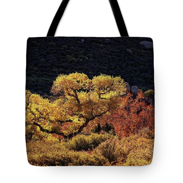 November In Arizona Tote Bag
