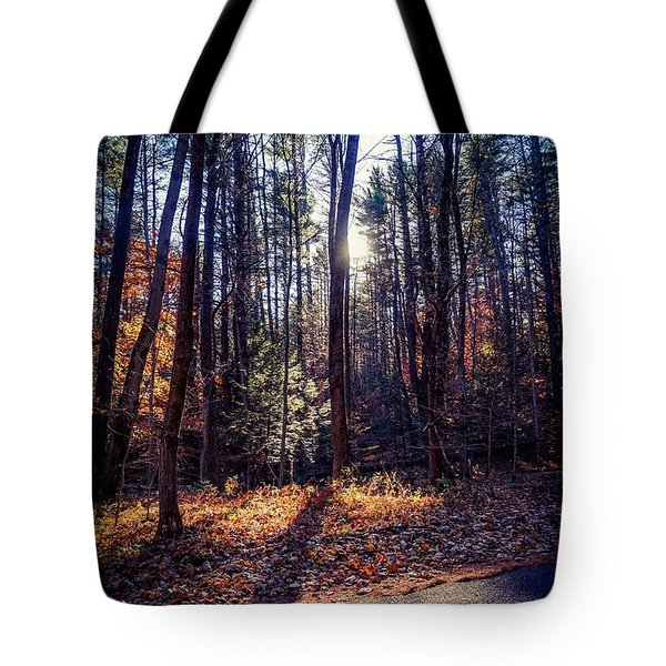 Tote Bag featuring the photograph November Light by Kendall McKernon