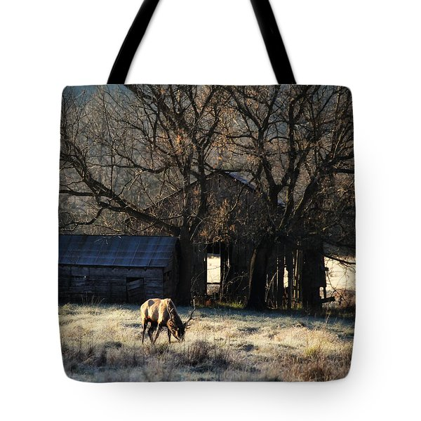 Tote Bag featuring the photograph November Sunrise by Michael Dougherty