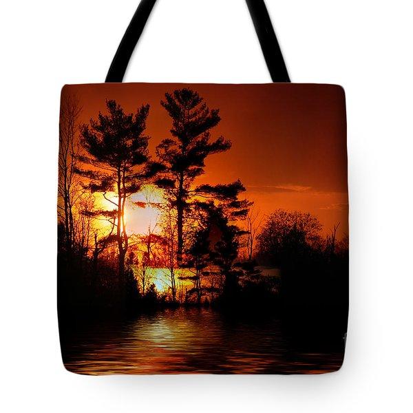 November Sunset Tote Bag by Elaine Hunter