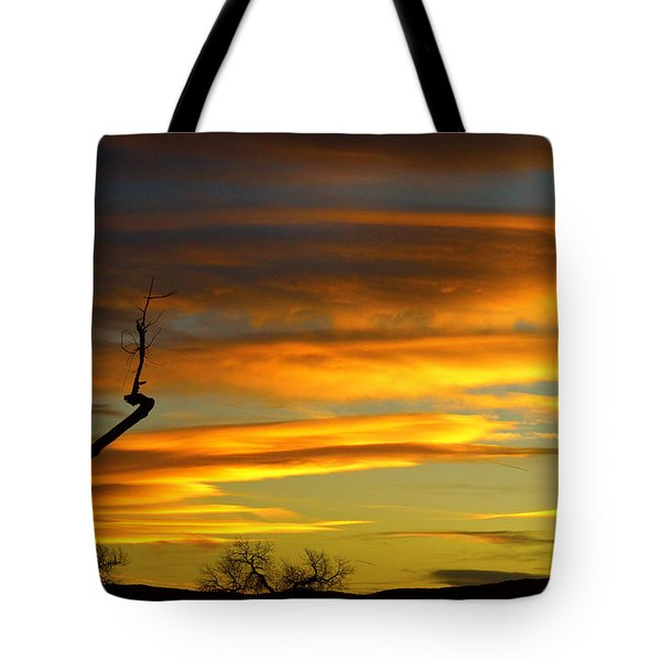 November Sunset Tote Bag by James BO  Insogna