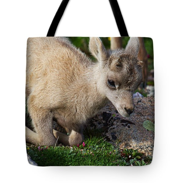 Lay Me Down Tote Bag