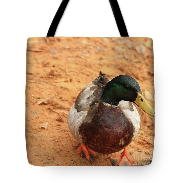 Tote Bag featuring the photograph Number 17 by Kim Henderson