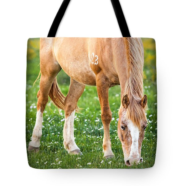 Tote Bag featuring the photograph Number 403 by Melinda Ledsome