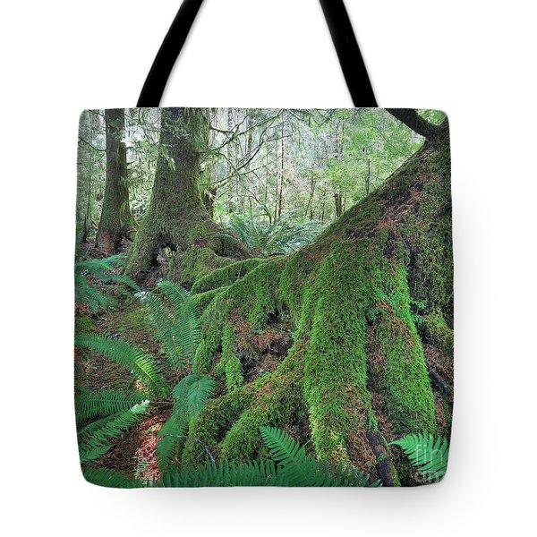 Nurse Trees Tote Bag