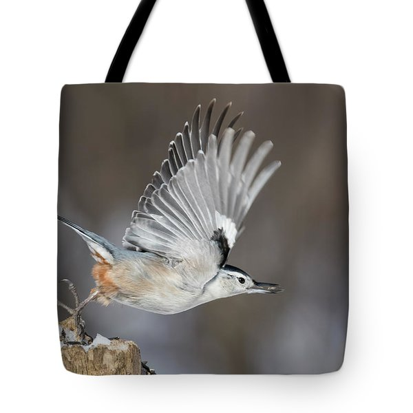 Tote Bag featuring the photograph Nuthatch In Action by Mircea Costina Photography