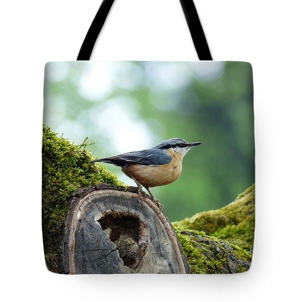 Nuthatch - Sitta Europaea Tote Bag