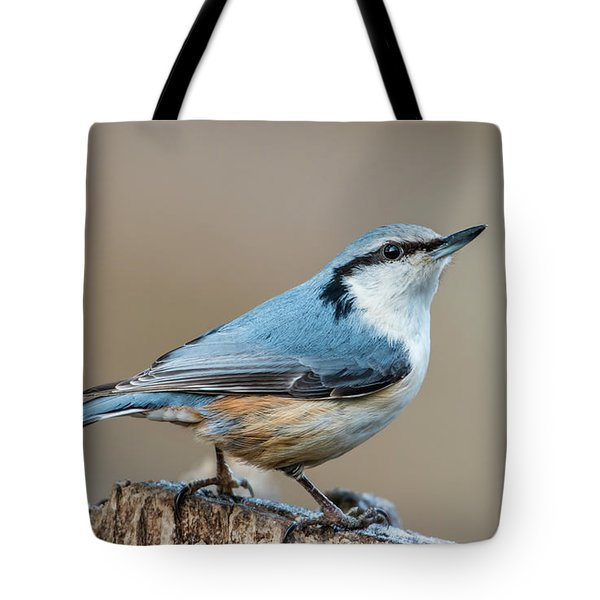 Nuthatch's Pose Tote Bag by Torbjorn Swenelius