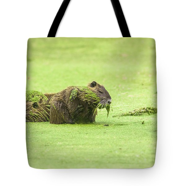 Tote Bag featuring the photograph Nutria In A Pesto Sauce by Robert Frederick