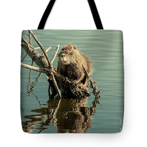 Tote Bag featuring the photograph Nutria On Stick-up by Robert Frederick