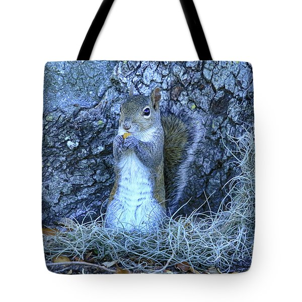 Tote Bag featuring the photograph Nuts Anyone by Deborah Benoit