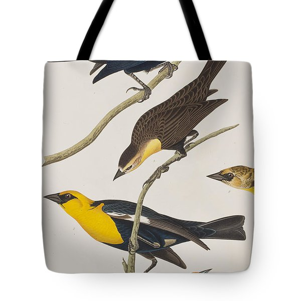 Nuttall's Starling Yellow-headed Troopial Bullock's Oriole Tote Bag