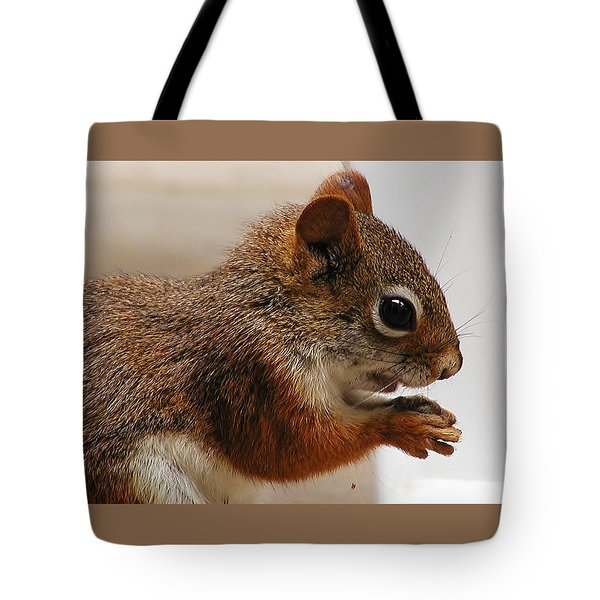 Tote Bag featuring the photograph Nutty Guy by Martha Ayotte